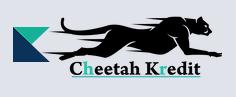 Cheetah Express AG